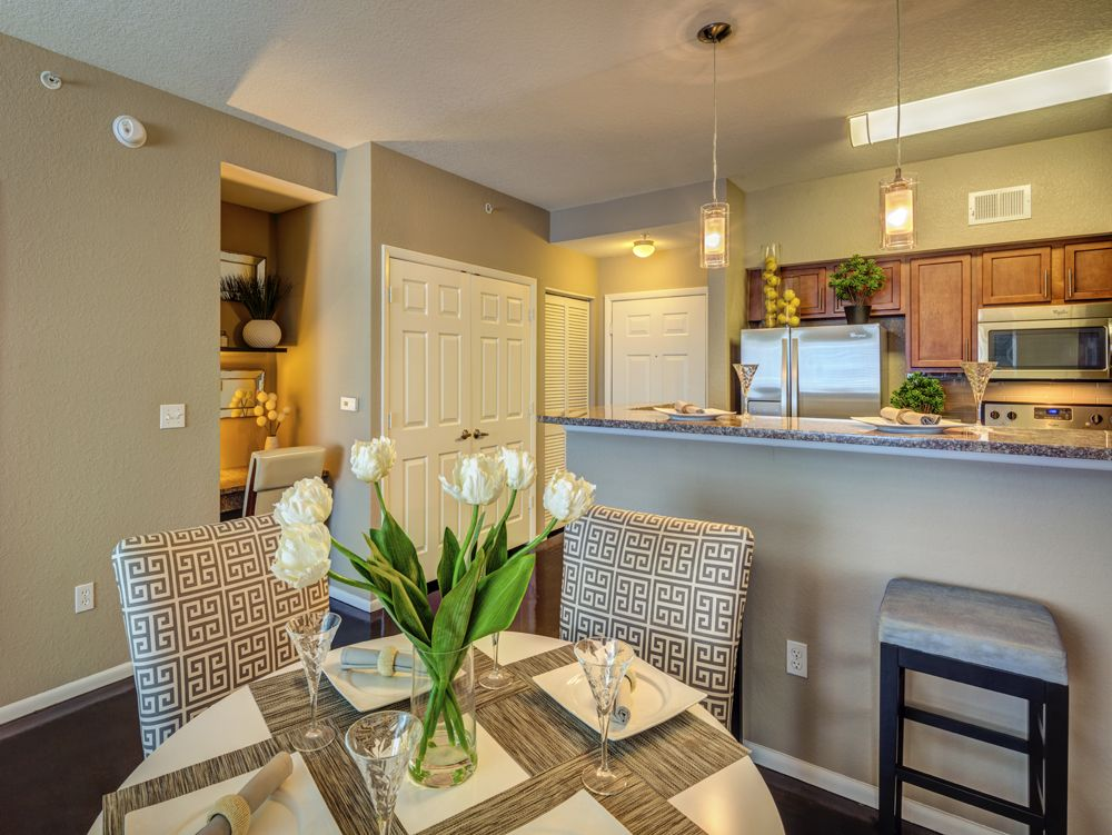 apartments in tampa fl for rent